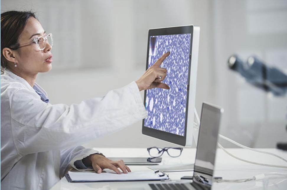 Woman at Computer Monitor